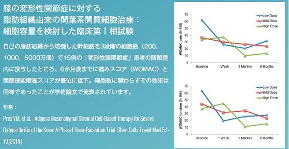 cellsource-henkeiseihizakansetsushou