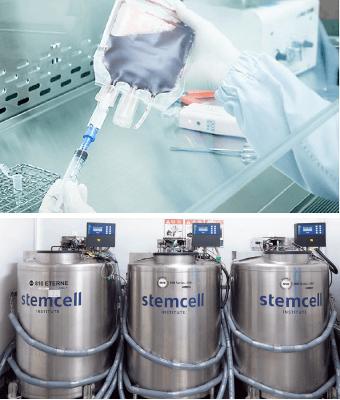 stemcell-center