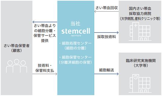 stemcell-jigyou