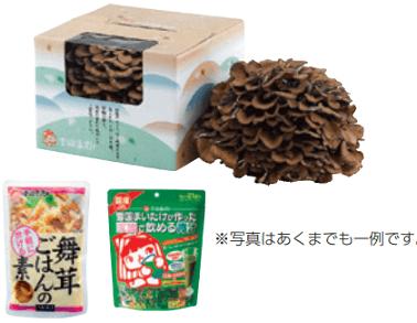 yukigunimaitake-kabunushiyuutai