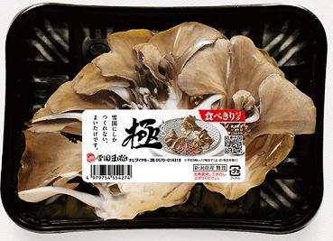 yukigunimaitake-kiwami